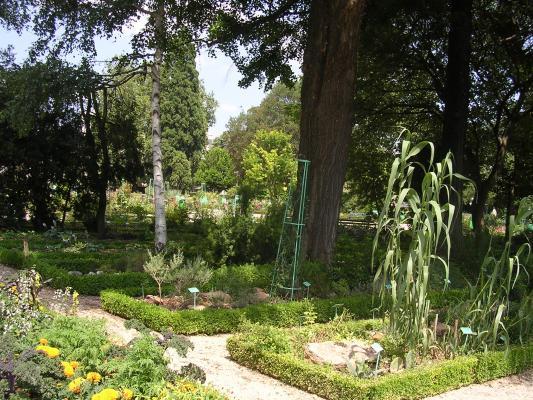 Le jardin de l 39 arquebuse dijon 21 21000 - Petit jardin robertson dijon ...