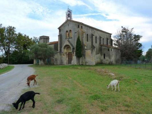 Eglise De Barcarin  U2013 Salin De Giraud  Salin De Giraud  13