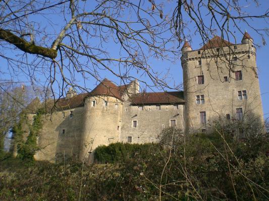 Le Chateau Du Pin Pin Le 39 39210 Https Bit Ly Xsrdl9
